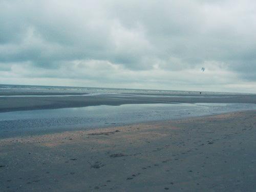 Mer du nord - juin 2008