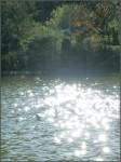 L'étang magique