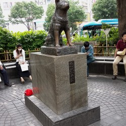 japon125